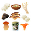 mushrooms food products soup or preserves package vector image