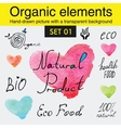 Organic elements and raw food diet designs