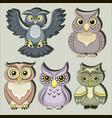 set color owls vector image