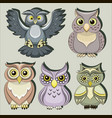 set of color owls vector image