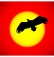 silhouette an eagle flying in front sett vector image