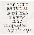 Handwritten brush style calligraphy font vector image