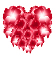 Red heart of flowers vector image