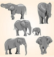 a set of african elephants vector image vector image