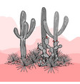 cacti group prickly pear cactus blue agaves and vector image vector image