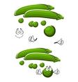 Cartoon sweet green pea vegetable vector image vector image