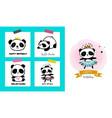 cute panda bear vector image vector image