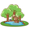 isolated picture little bear in pond vector image vector image