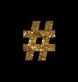 luxury golden glitter hashtag symbol vector image vector image