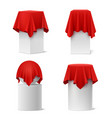 presentation silk cloth set vector image vector image