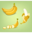 Set of the fresh banana fruit icons vector image vector image