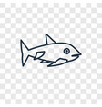 shark concept linear icon isolated on transparent vector image