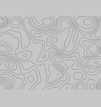 topographic pattern lines on gray background vector image vector image