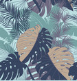 tropical seamless pattern railway surface vector image vector image