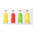 glass juice bottle colored packaging set vector image vector image