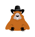 groundhog day marmot in hat rodent aristocrat for vector image vector image