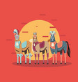 three decorated carnival circus horses vector image vector image