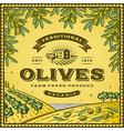 Vintage olives label vector image vector image