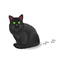 Black cat with footsteps vector image