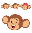 monkeys rare animal cartoon macaque head