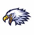 eagle mascot logo sports team mascot vector image vector image