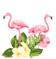 flamingo background design tropical flowers vector image vector image
