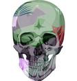 human skull bones skeleton dead vector image vector image