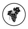 icon of grape vector image vector image