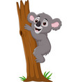 cartoon koala climbing tree branch vector image vector image