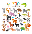 collection of Zoo animals Set of cute cartoon vector image vector image