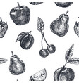 fruits seamless pattern hand drawn sketch in vector image