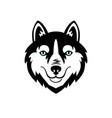 husky head dog black and white design vector image vector image