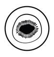 icon of kiwi vector image vector image