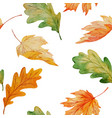 maple and oak leaves watercolor seamless pattern vector image vector image