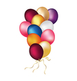 Party balloons isolated on white vector image