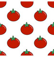 seamless pattern with fresh tomatoes on a white vector image