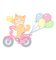 cat on bike vector image vector image