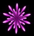 Firework salute burst in black night background vector image vector image