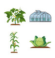 greenhouse and plant logo vector image