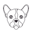 hand draw face dog icon vector image