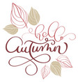 hello autumn text and leaves on white background vector image vector image