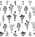 Herbarium flowers with roots seamless pattern vector image vector image