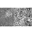 leopard and tiger and pattern background vector image vector image