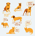 Set dog ans cats icon and labels pet shop vector image