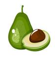 Avocado fruit cartoon icon isolated on white