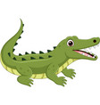 cartoon crocodile isolated on white background vector image vector image