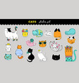 cats cute sticker collection hand drawn vector image