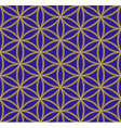 colored flower of life sacred geometry pattern vector image