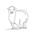 continuous one line drawing a sheep standing vector image vector image