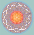 Flower of life seed mandala-spring edition vector image vector image